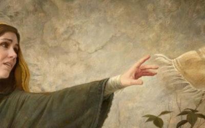 Domingo 13 – B | Milagros y curaciones | IQC2021