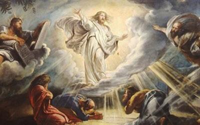 Domingo 18 – B | Transfiguraciones de Dios